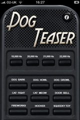 Dog Teaser Screenshot